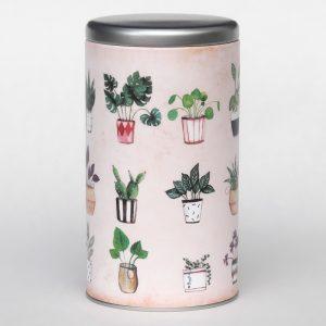 Boîte à café – Belles plantes